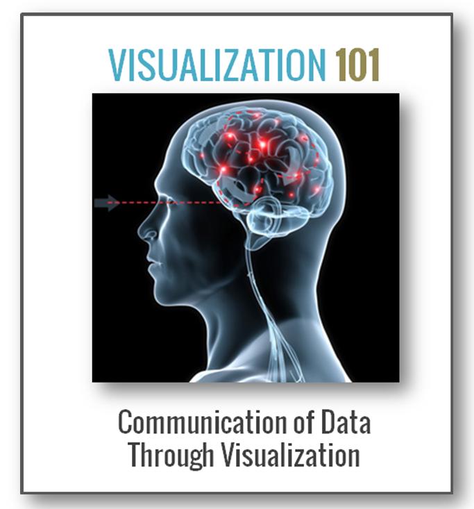 Neubrain Data Visualization Training Video